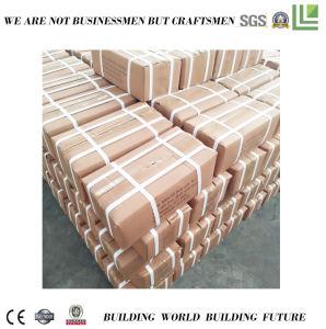 La Chine vis et écrous de toiture avec la qualité