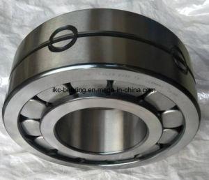 Roulements à rouleaux cylindriques Lsl192348-TB
