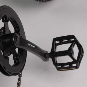 Energía verde Electric bicicleta de montaña con un alto rendimiento E-Bike