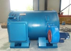 5000kw Brushless Permanente Generator van de Magneet