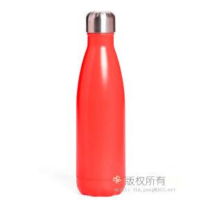 Fles van de Gift van de Fles van de Fles van de Sport van het Water van de Fles van het Water van het roestvrij staal de Vacuüm Vacuüm