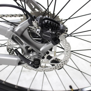 Bici elettrica con il motore della metà di Bafang Ultrasystemg 510 48V 500W
