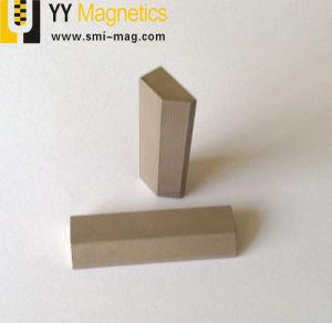 常置SmCoのブロックの磁石によってカスタマイズされる磁石