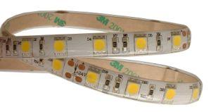 Flexible impermeabile 5050 Strips (60LEDs/M)