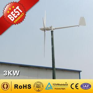 3kwによっては家へ帰る使用の風力/風力の発電機システム(3000W)が