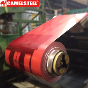 Lamiera di acciaio galvanizzata colore dei 26 calibri per il tetto di Philippnes