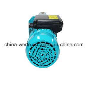 Pompa a getto autoadescante elettrica della pompa ad acqua (JET100) 0.75kw /1.0HP