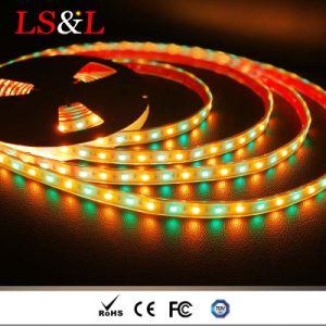 Un indicatore luminoso di 5050 di RGB+Amber DC12V/DC24V LED strisce della corda con Ce & RoHS