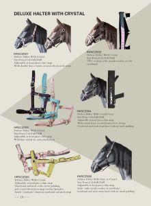 Halter del cavallo