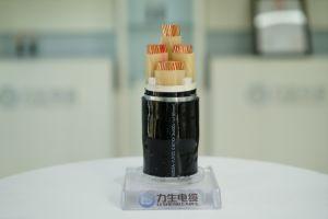 450/750V XLPE는 강철 테이프 기갑 Polyolefin에 의하여 넣어진 낮 연기 할로겐 자유로운 방연제 종류를 내화성 조종 케이블 격리했다