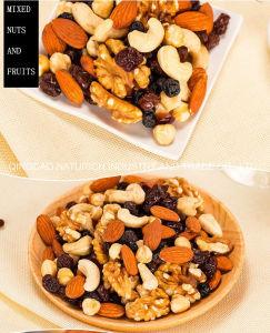 Porcas snacks orgânicos misturados/diariamente as frutas secas