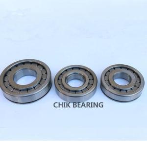 Complemento completo dos rolamentos de roletes cilíndricos SL185008-S3-a-R200-250