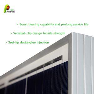 Poli moduli solari di alta efficienza 330W per il sistema solare
