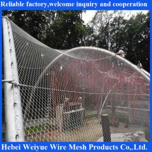De Kabel die van de Draad van het roestvrij staal Netto/voor Dierentuin Enlcosures opleveren