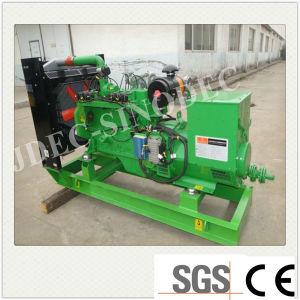 Generatore caldo 260kw del biogas del generatore di potere del biogas di vendita