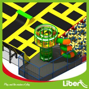 Trampolino della sfera di espediente degli adulti del centro del gioco con il disegno personalizzato
