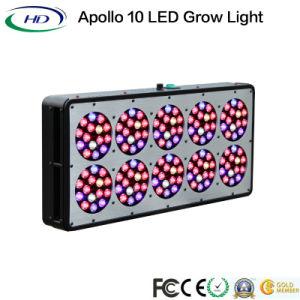 La pianta piena dell'Apollo 10 LED di spettro coltiva l'indicatore luminoso