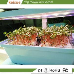 Микро гидропоники Keisue фермы для выращивания Microgreens Кэс 4.0