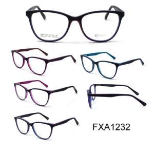 2017 nieuwe Aankomst om de Glazen van het Oog van de Acetaat van de Vorm (FXA1232)