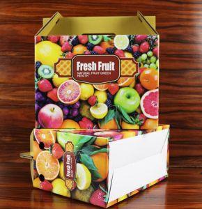 عادة ثمرة يعبّئ صندوق لأنّ قمة/كم/عنب/[ويكي] ثمرة /Apple مع [بفك] نافذة