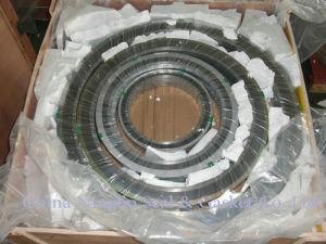 Joints d'étanchéité SS316 enroulé en spirale avec bouchon de remplissage de graphite