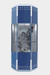 乗客のエレベーターを見るセリウムによって承認される視力