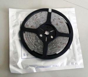 5050 Las tiras de LED SMD impermeables (BL-5050-60D)