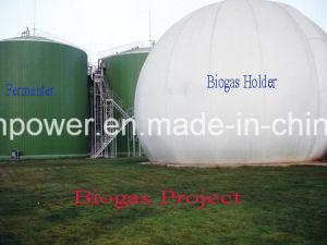 Biogas-Kraftwerk-oder Gas-Generator-Teile für Biogas Syngas