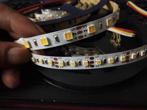 Striscia registrabile 3000K di nuovo colore il TDC 2in1 LED con 6000K
