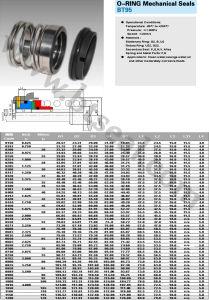 Guarnizioni meccaniche del giunto circolare (BT95) 1