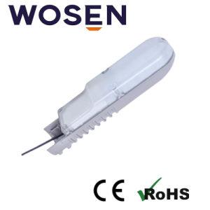 LED blanco natural de la luz exterior de 25W para jardín