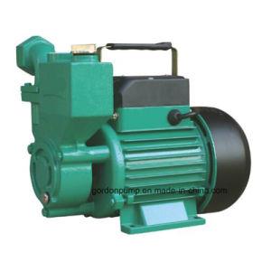 Wzb rotor en laiton de la série de l'autonomie de la pompe de pression de jardin d'amorçage des périphériques