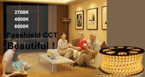 Openlucht Decoratieve Lichte Flexibele LEIDENE SMD Strook met 220V Voltage