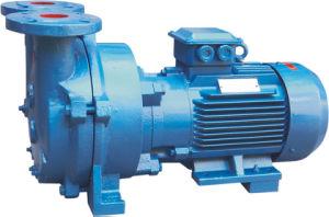 Wasserring-Vakuumpumpe (2BV)