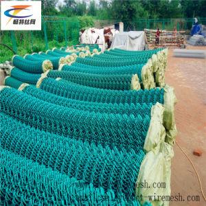 50*50mm, 60*60mm recouvert de PVC Wire Mesh de maillon de chaîne