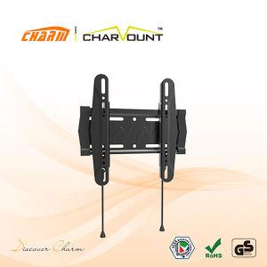 용수철 자물쇠 (CT-PLB-E611)를 가진 고전적인 조정 부류 텔레비젼 벽 마운트