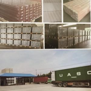 合成のボードの高品質の屋外のフロアーリング中国製
