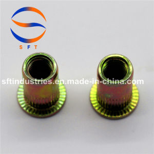 M10 à tête plate corps rond moleté l'écrou rivet aveugle ISO13918
