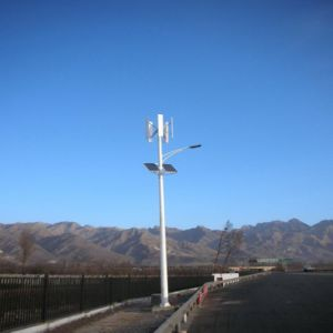 1kw 48V fuori dal laminatoio di vento verticale di Vawt di griglia/dall'energia eolica/dal generatore turbina del vento