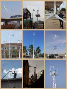 良質販売のための中国24V/48V/96V 1kwの水平の風力発電機