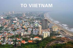 Servizio professionale dell'agente di trasporto da Guangzhou nel Vietnam