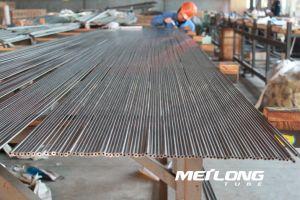 Tp316 Buizenstelsel van de Instrumentatie van het Roestvrij staal van de Precisie het Naadloze