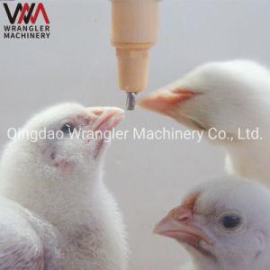 Exploração da camada de bateria automático de grão de bico de pato bocais de água de gaiola Preço de equipamento de capoeira Tetina para frangos de corte