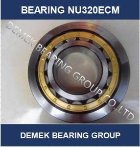 Roulement à rouleaux cylindriques Nu320 ECM avec cage en laiton