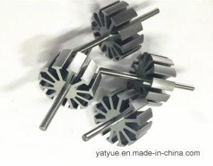 마이크로 DC 모터를 위한 공장 가격 고품질 회전자