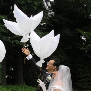 De milieuvriendelijke Witte Ballon van de Duif van het Helium van het Huwelijk Bio