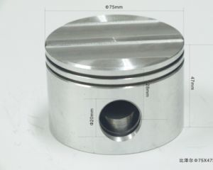 Zuiger in Semi Hermetische Compressor Bitzer