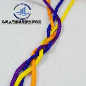 Corda della maniglia intrecciata cavità durevole all'ingrosso del PE per il sacco di carta (viola)