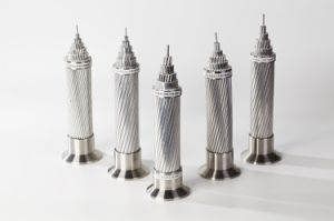 Leiders ACSR van de Kabels van de Macht van de goede Kwaliteit de Lucht Naakte met de Normen van CEI van ASTM BS