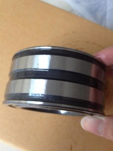 Gran descuento rodamiento de rodillos cilíndricos SL045019